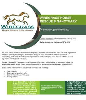 Wiregrass Horse Rescue & Sanctuary